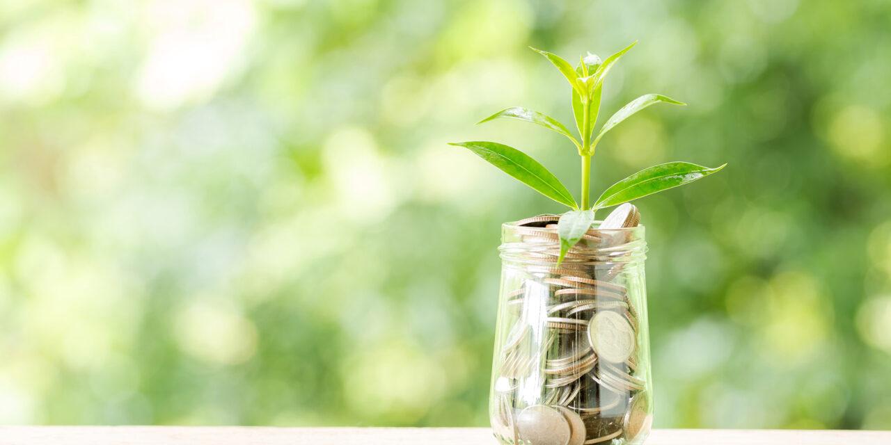 Mogućnosti ulaganja za 2021.: Gdje uložiti dodatni novac ?!